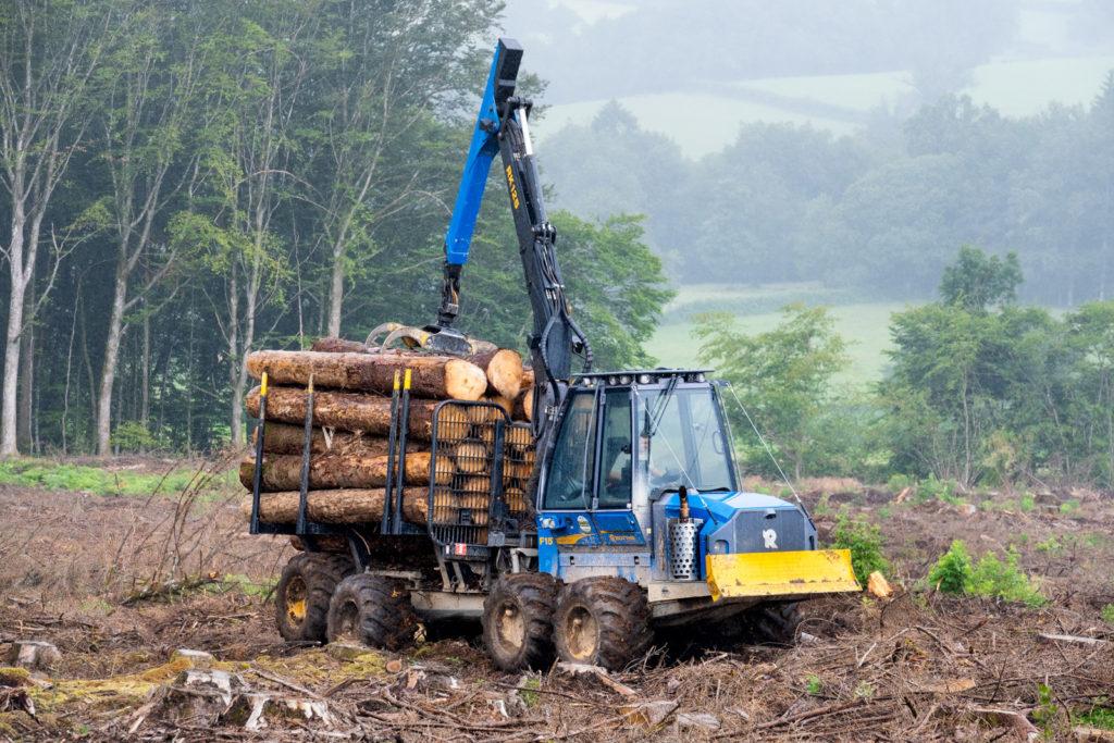 machine forestiere sport system reprogrammation