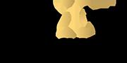 sport-system-logo